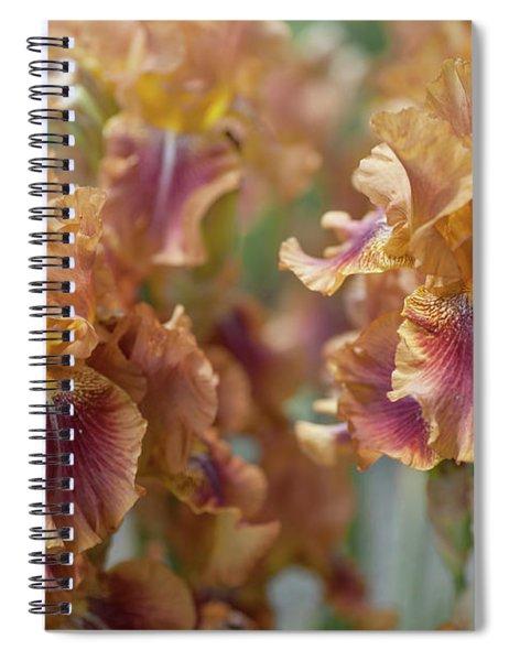 Autumn Leaves Irises In Garden Spiral Notebook