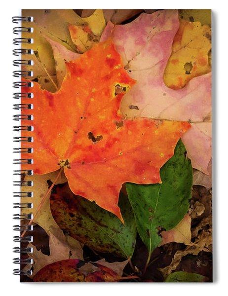Autumn Love Spiral Notebook