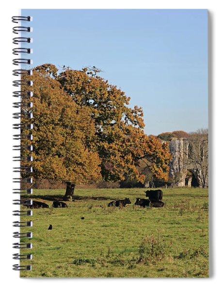 Autumn Newark Priory Ripley Surrey Uk  Spiral Notebook