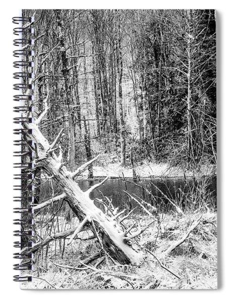 Autumn Snow Black And White Spiral Notebook