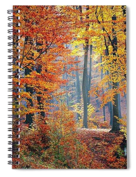 Autumn Splendour Spiral Notebook