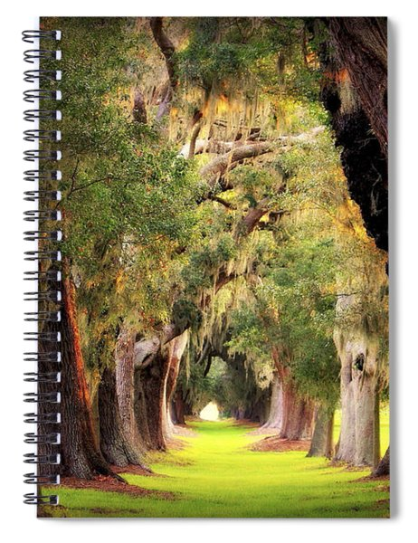 Avenue Of Oaks Sea Island Golf Club St Simons Island Georgia Art Spiral Notebook