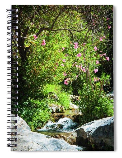 Babbling Brook Spiral Notebook