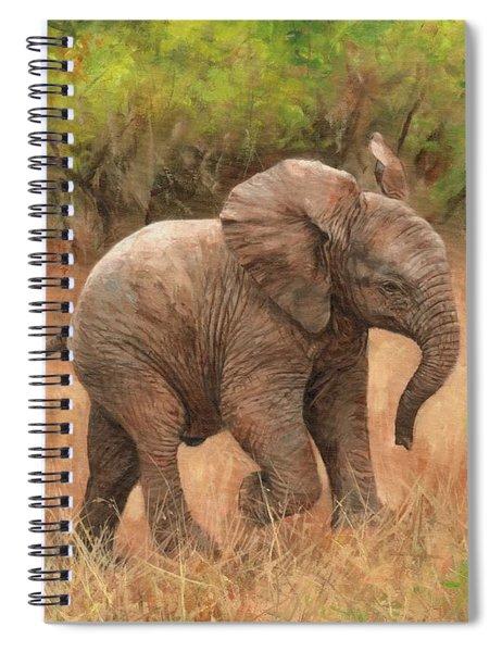 Baby African Elelphant Spiral Notebook