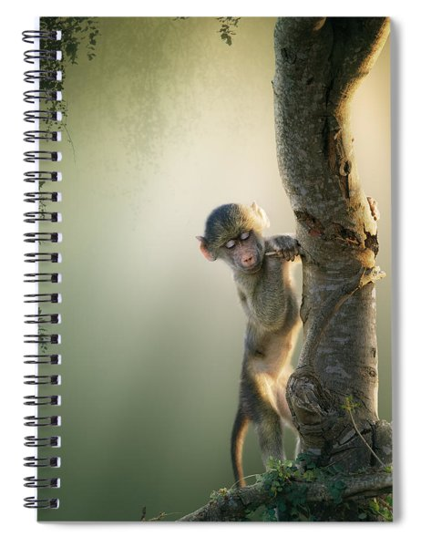 Baby Baboon In Tree Spiral Notebook