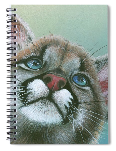 Baby Blues Spiral Notebook