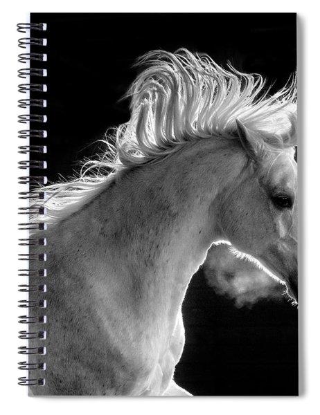 Backlit Arabian Spiral Notebook