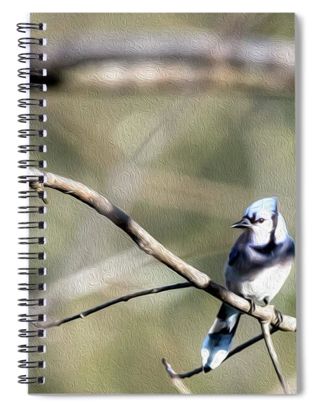 Backyard Blue Jay Oil Spiral Notebook
