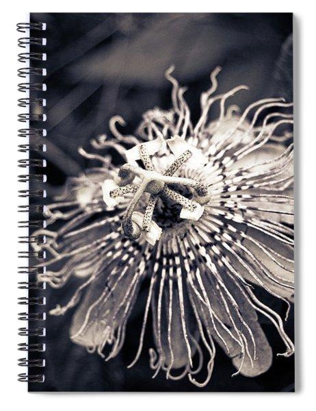 Clematis Flower Bloom Spiral Notebook