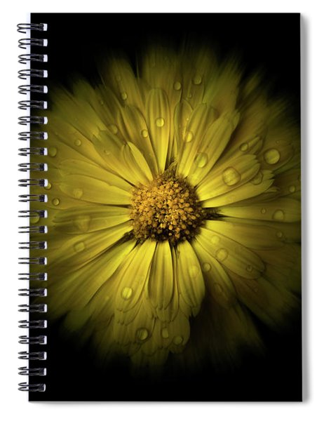 Backyard Flowers 10 Color Flow Version Spiral Notebook