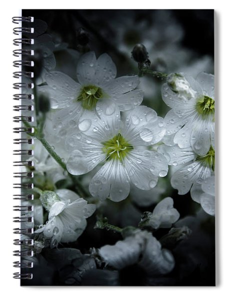 Backyard Flowers 51 Color Version Spiral Notebook