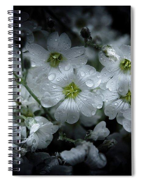 Backyard Flowers 51 Color Version Spiral Notebook