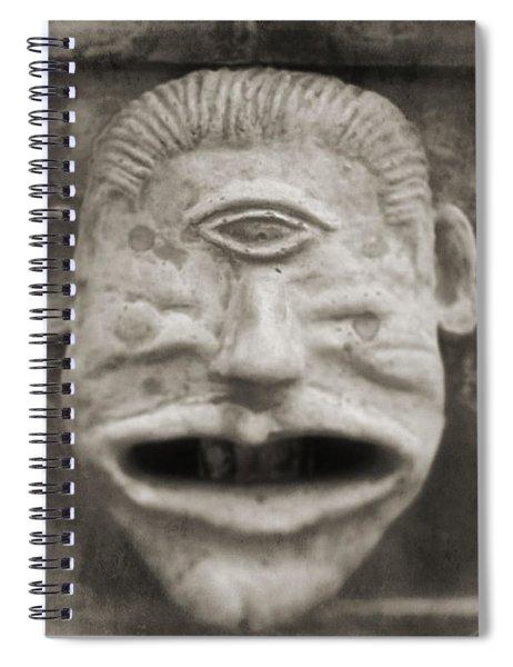Bad Face Spiral Notebook