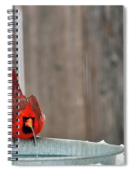 Spiral Notebook featuring the photograph Bad Water by Edward Peterson
