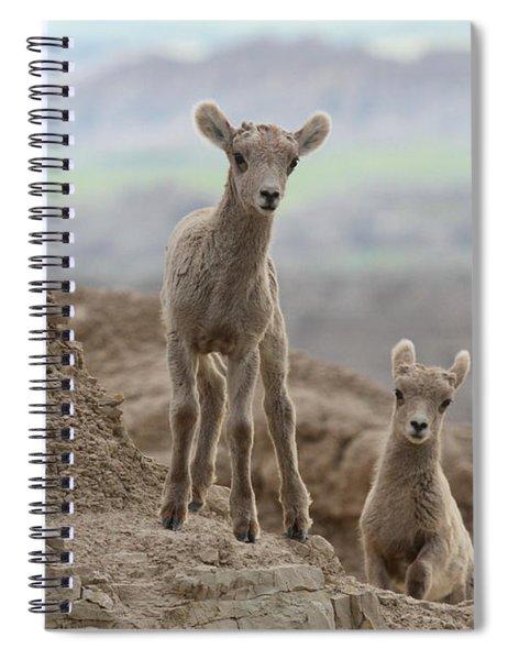 Badlands Curiosity Spiral Notebook