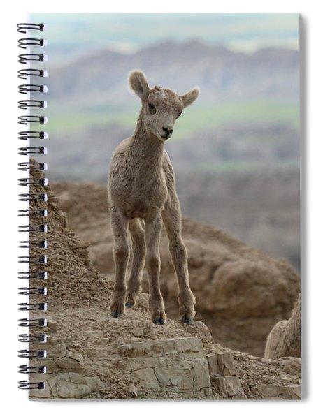 Badlands Dynamic Duo Spiral Notebook
