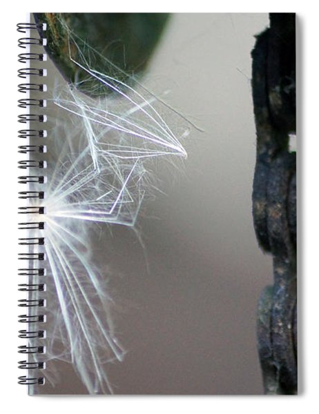 Balance, Feather And Iron Chain In The Wind Spiral Notebook