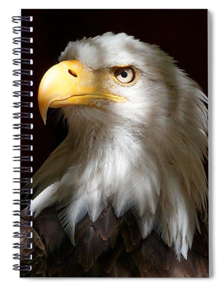 Bald Eagle Closeup Portrait Spiral Notebook