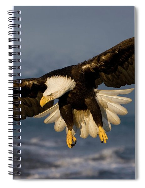 Bald Eagle In Action Spiral Notebook