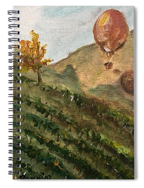 Balloon Over The Vines Spiral Notebook