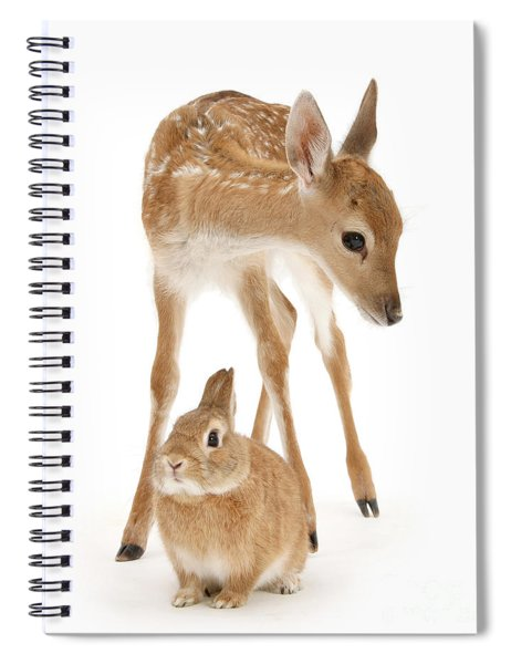 Bambi And Thumper Spiral Notebook
