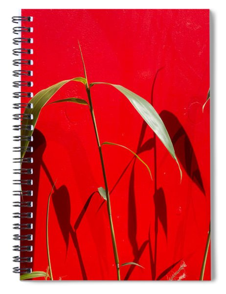Bamboo Against Red Wall Spiral Notebook