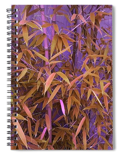 Bamboo Leaves In Spiced Pumpkin Spiral Notebook