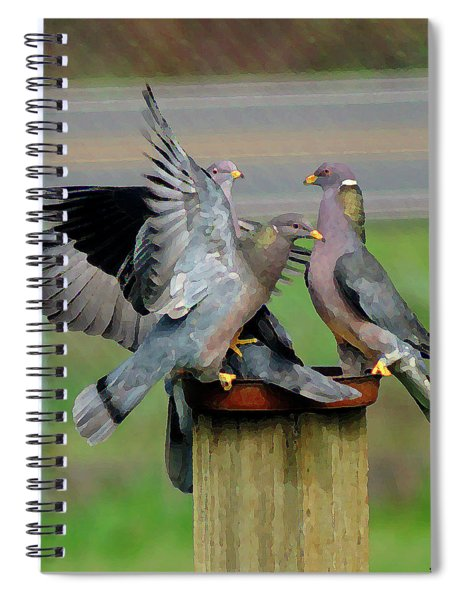 Band-tailed Pigeons #1 Spiral Notebook