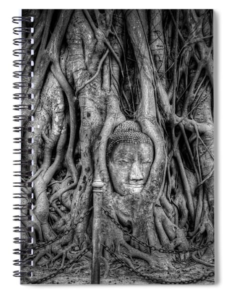 Banyan Tree Spiral Notebook