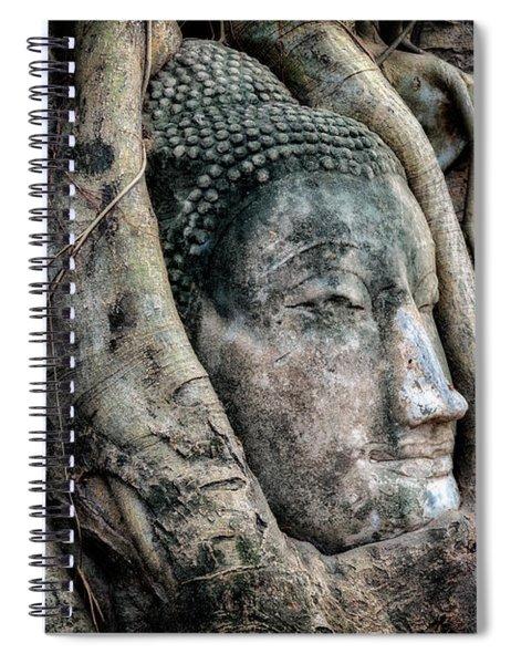 Banyan Tree Buddha Spiral Notebook