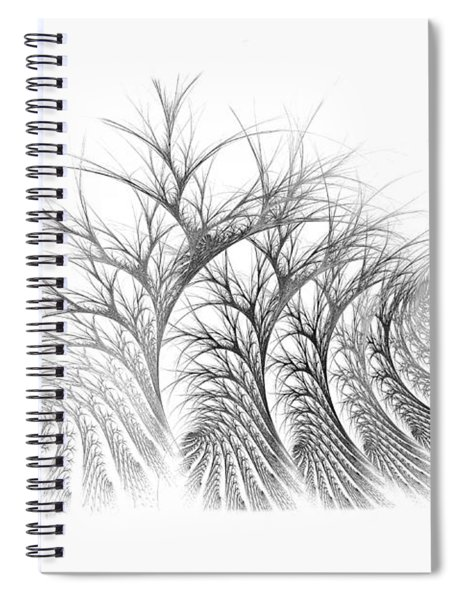 Bare Trees Daylight Spiral Notebook