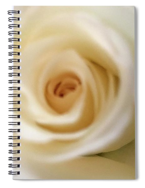 Barely White Rose Spiral Notebook