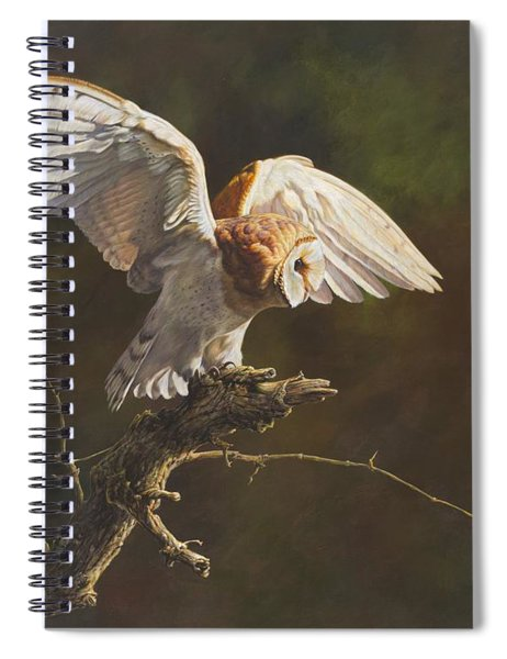 Spiral Notebook featuring the painting Barn Owl by Alan M Hunt