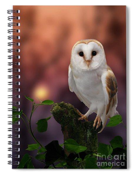 Barn Owl At Sunset Spiral Notebook