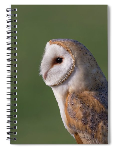 Barn Owl Profile Spiral Notebook