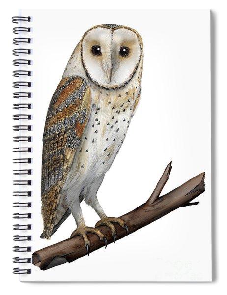 Barn Owl Screech Owl Tyto Alba - Effraie Des Clochers- Lechuza Comun- Tornuggla - Nationalpark Eifel Spiral Notebook