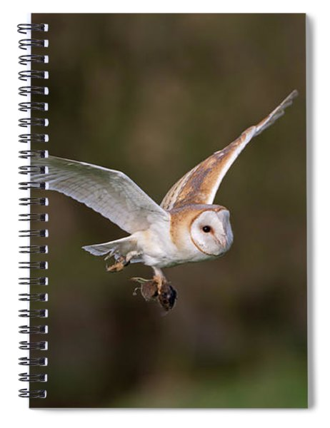 Barn Owl With Vole Spiral Notebook