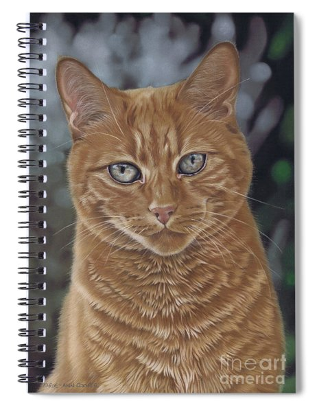 Barry The Cat Spiral Notebook
