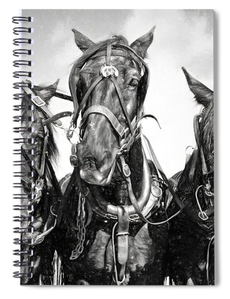Mary's Team In Black And White Spiral Notebook