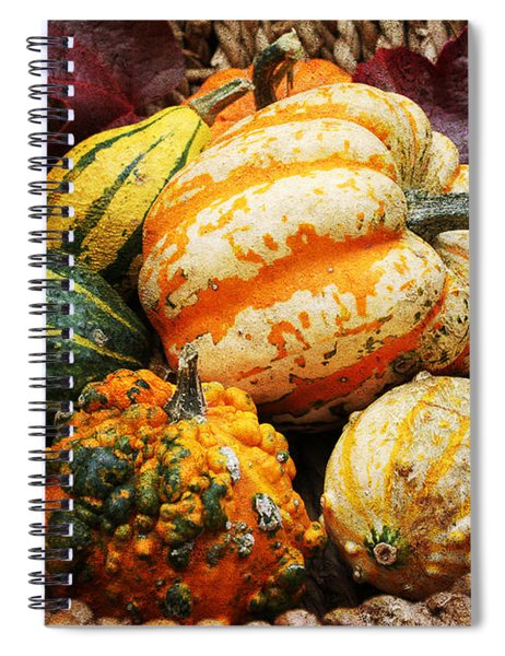 Basket Of Pumpkins Spiral Notebook