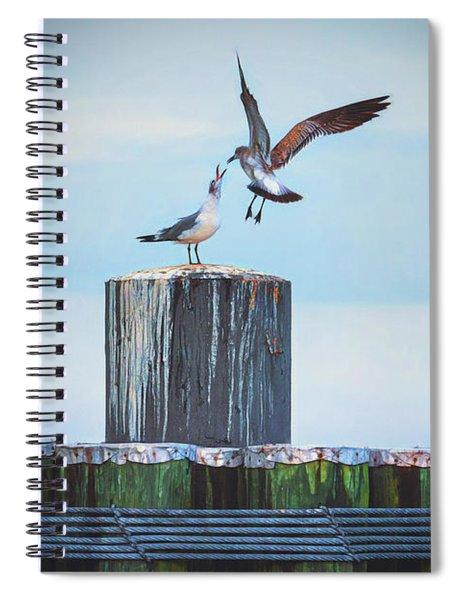 Battle Of The Gulls Spiral Notebook
