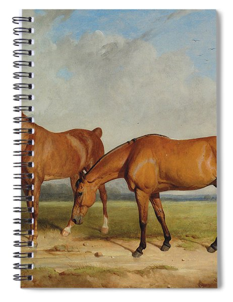 Bay Hunter And Chestnut Mare In A Field Spiral Notebook