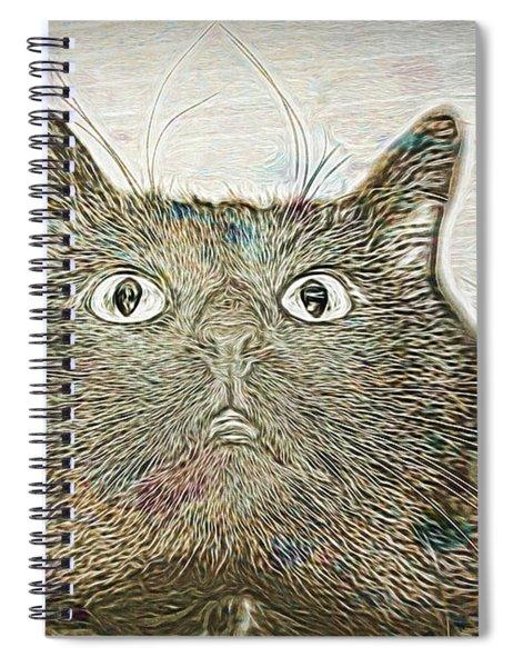 Bb Gazing Spiral Notebook