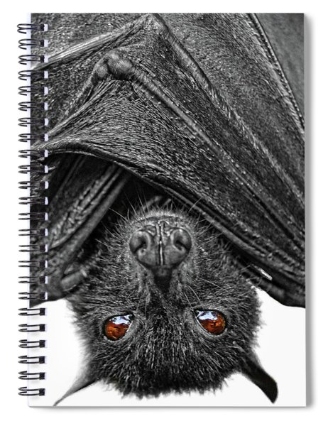 Be Afraid  Spiral Notebook