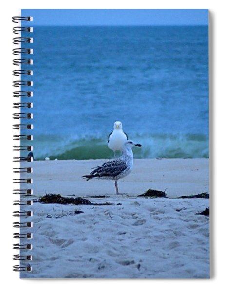 Beach Birds Spiral Notebook