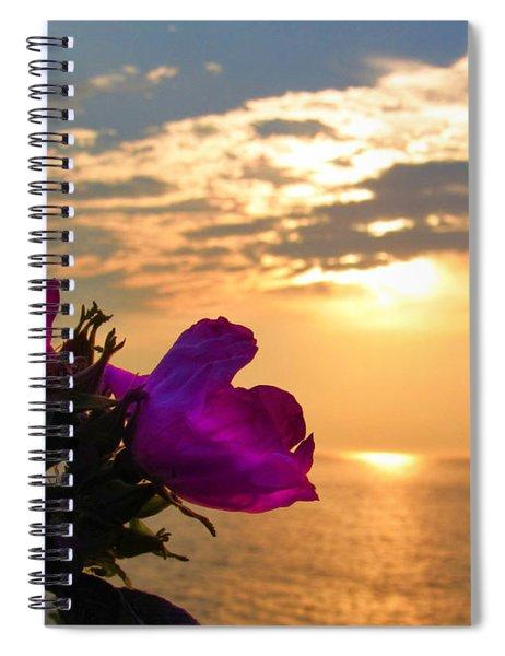 Beach Roses Spiral Notebook