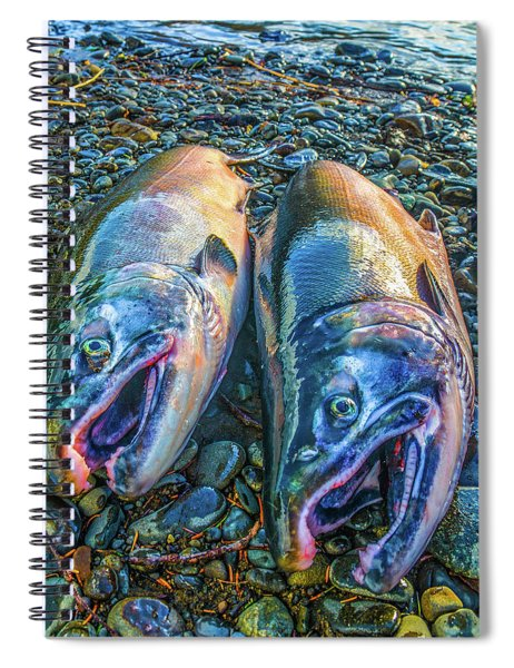 Beached Coho Spiral Notebook
