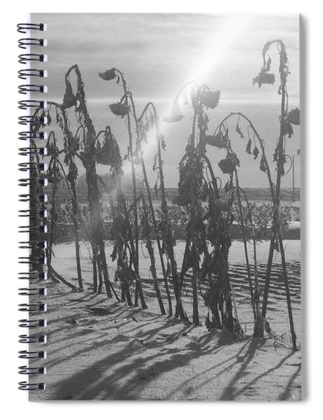 Beam Of Light Spiral Notebook