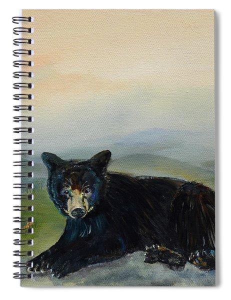 Bear Alone On Blue Ridge Mountain Spiral Notebook