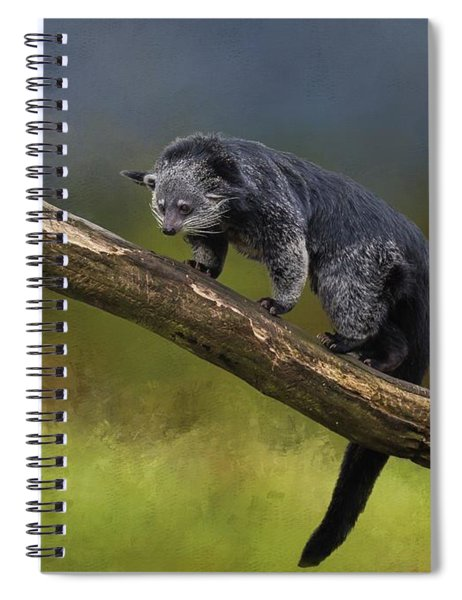 Bearcat Spiral Notebook